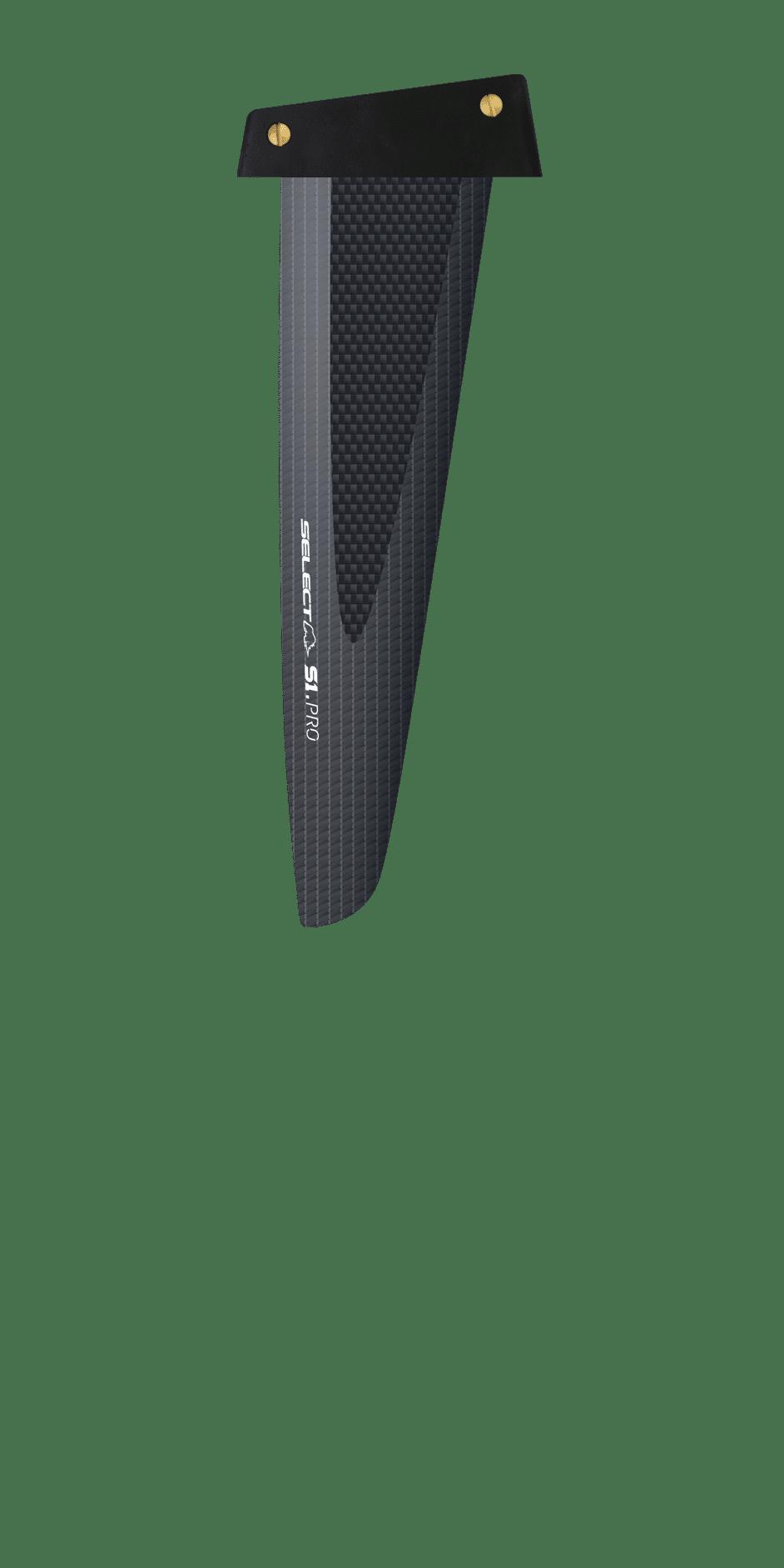 S1 Pro